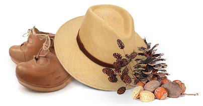 Hat and pine cones, restaurants Gex, La Table de la Mainaz