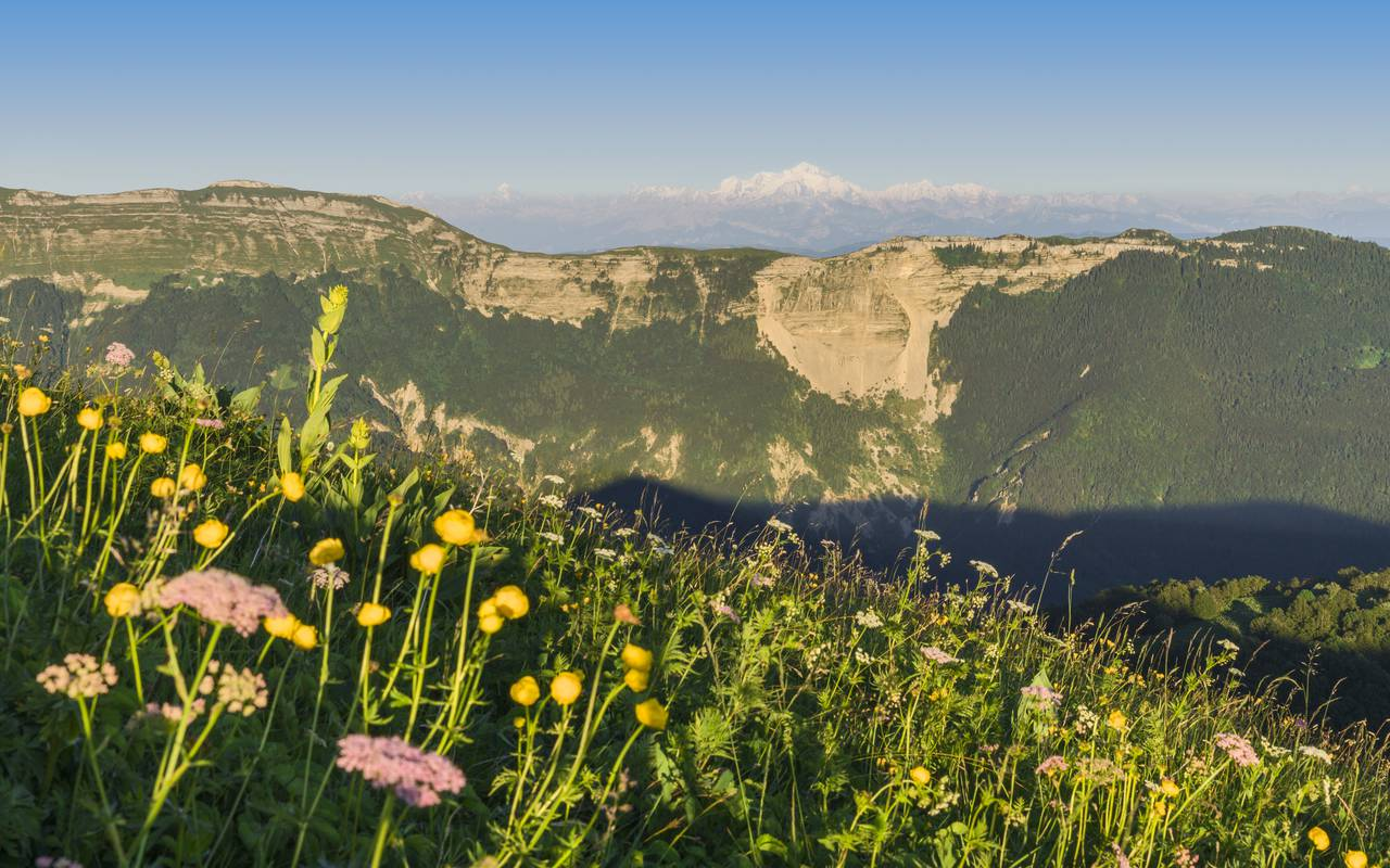 Mountain in bloom, hotel gex, La Mainaz.