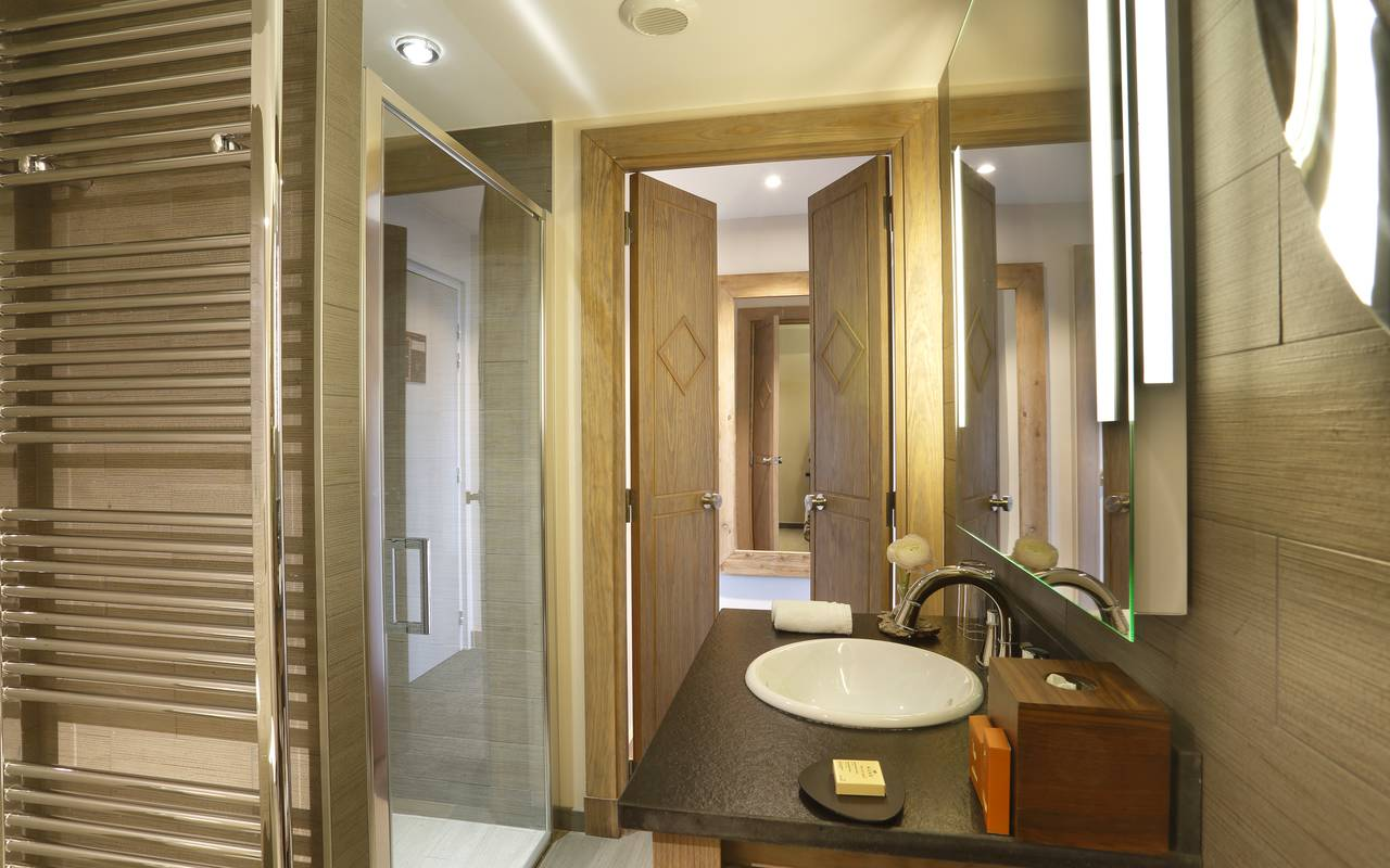 Well equipped bathroom with shower, hotel ferney voltaire, La Mainaz.
