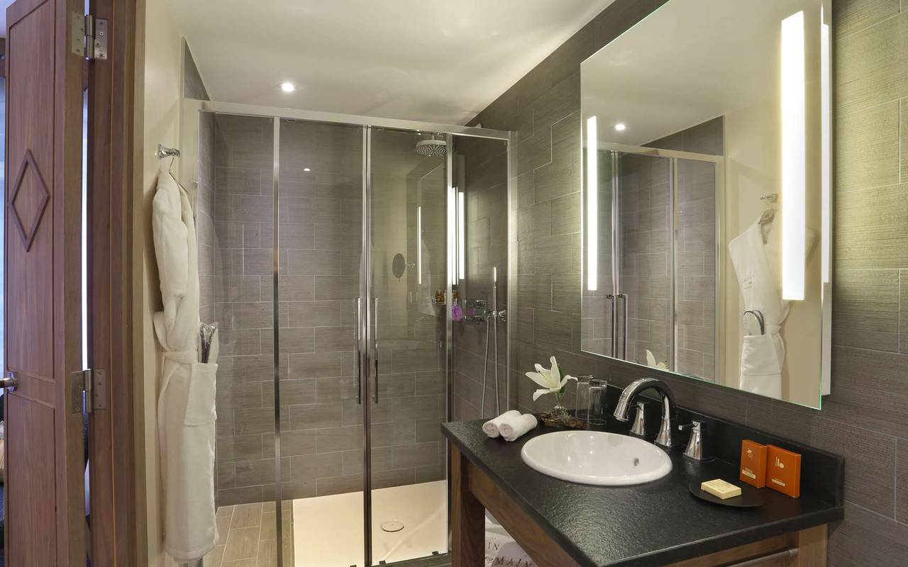 Well equipped bathroom with shower, hotel geneva airport switzerland, La Mainaz.