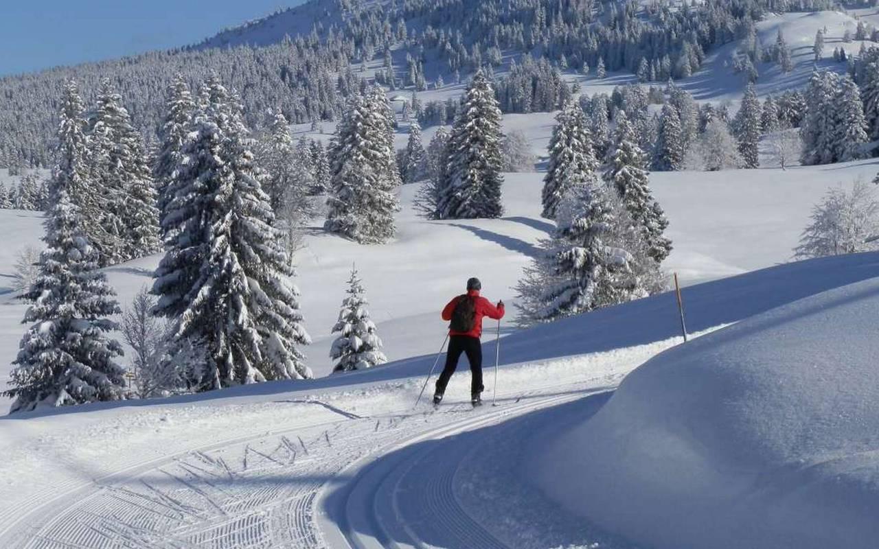 Slope surrounded by pine trees, Geneva wedding venues, hotel La Mainaz
